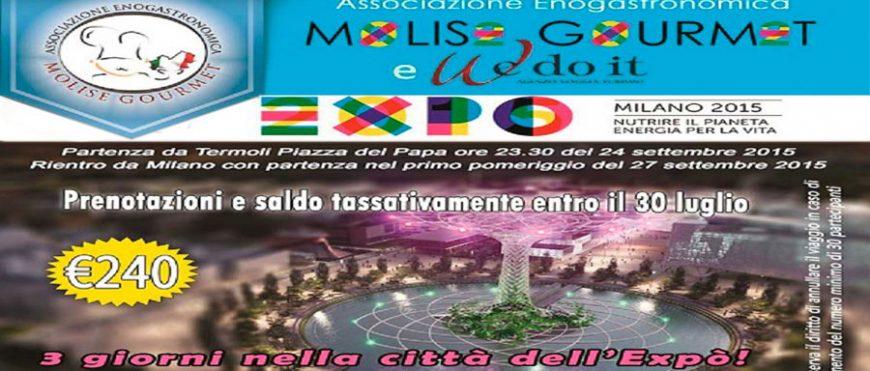 Vi portiamo a visitare Milano Expò 2015